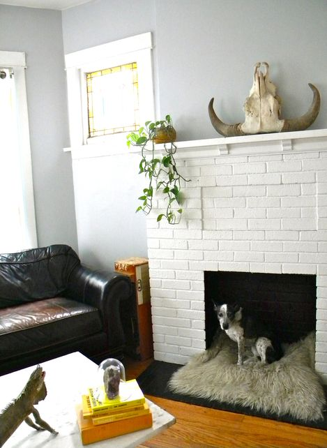 Creative Fireplace Hearth Decorating Ideas : Non Working Fireplace Doggy  Home Design