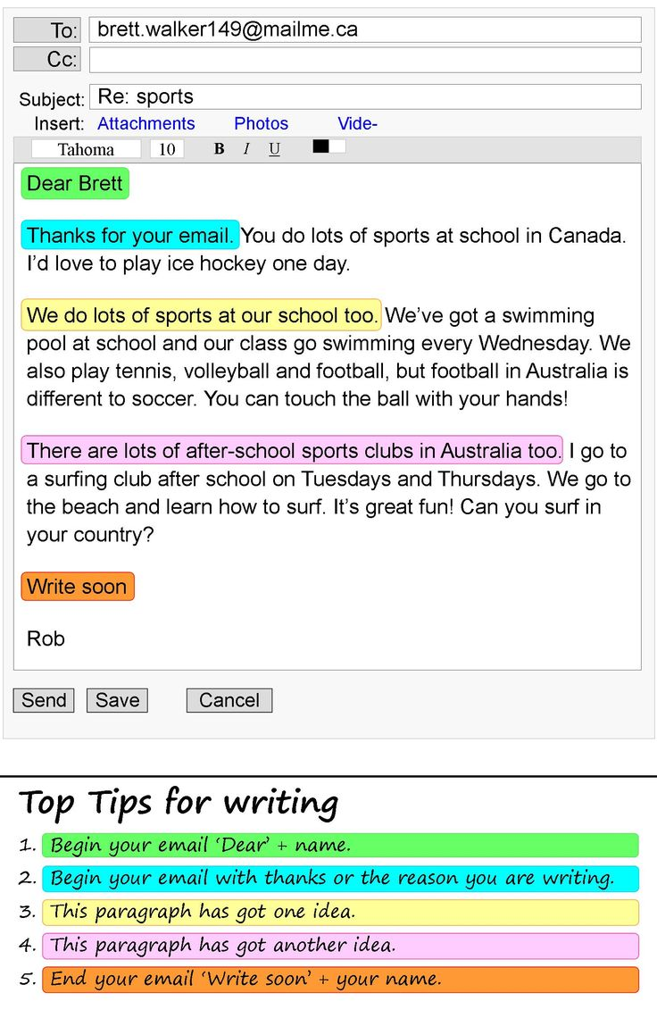 sports day essay in english