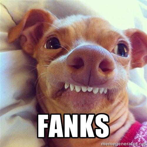 visit www.amazingdogtales.com for the best funny dog joke pics,inspirational dog stories and dog news.... Phteven Dog - fanks