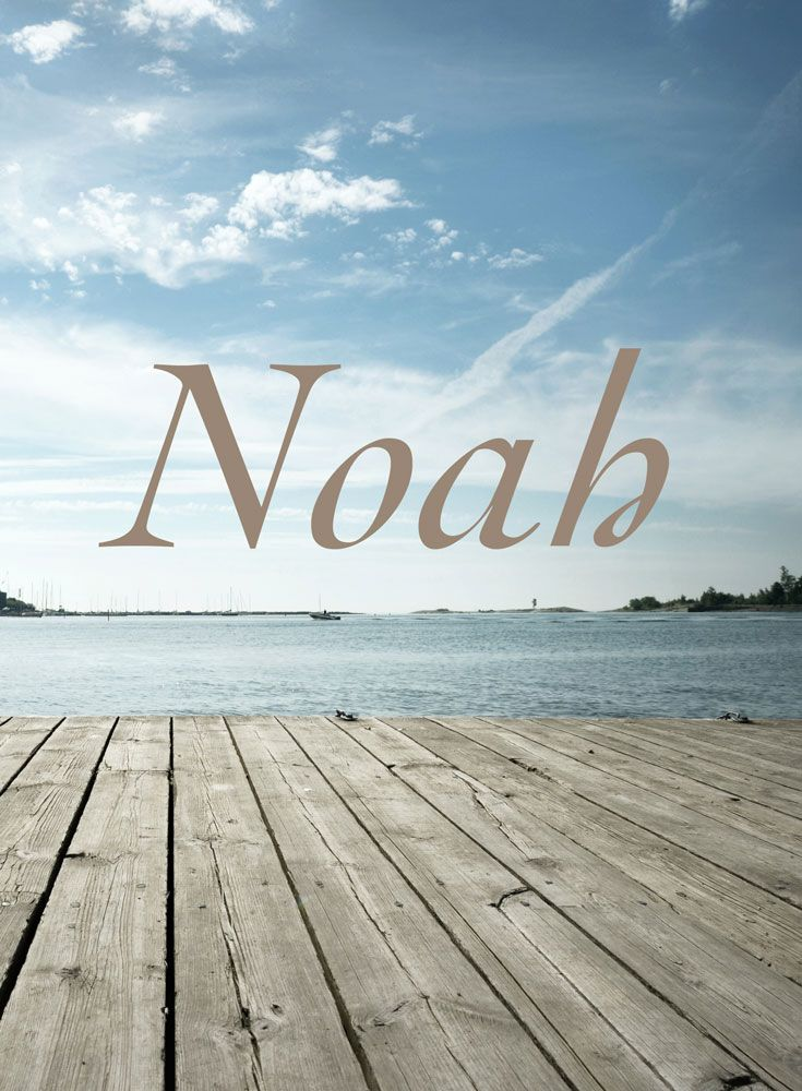 The name Noah is a Hebrew baby name. In Hebrew the meaning of the name Noah is: Comfort; long-lived; repose. In the Bible, Noah built the ark, allowing his family and a male/female pair of every species of animal to survive the flood.