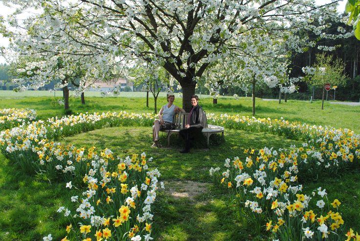 Onze locatie biedt 400m2 tuin Het voorjaar is volop in beweging! de narcissenen scilaatjes bloeien volop In het tuinpaviljoen verzorgen we 3 presentaties TUINEN 100 – 100 m2 Tuin rondom vrijstaande woning Boerderijtuinen/ landschappelijke tuinen Is uw tuin aan een verandering toe  In gesprek met Mariëtte  Komt uw tuin vanzelf tot LEVEN WELKOM […]