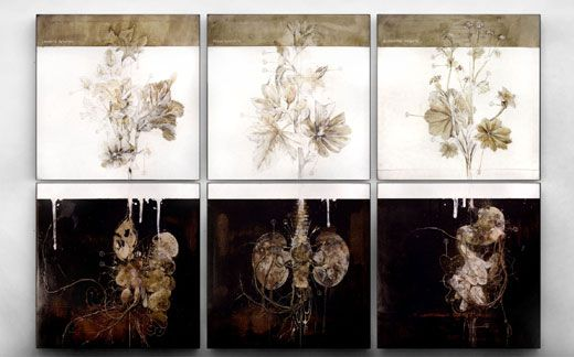 """asylum-art: """" The Anatomical Work of Nunzio Paci artist on tumblr """"My whole work deals with the relationship between man and Nature, in particular with animals and plants. The focus of my observation..."""