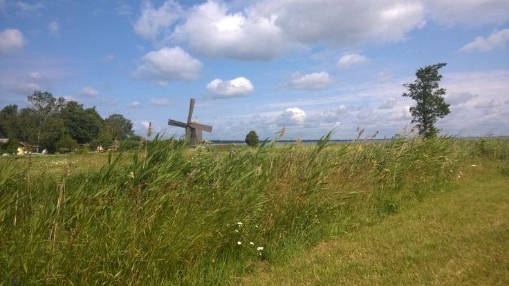 Field in Estonia   Eastbook.eu