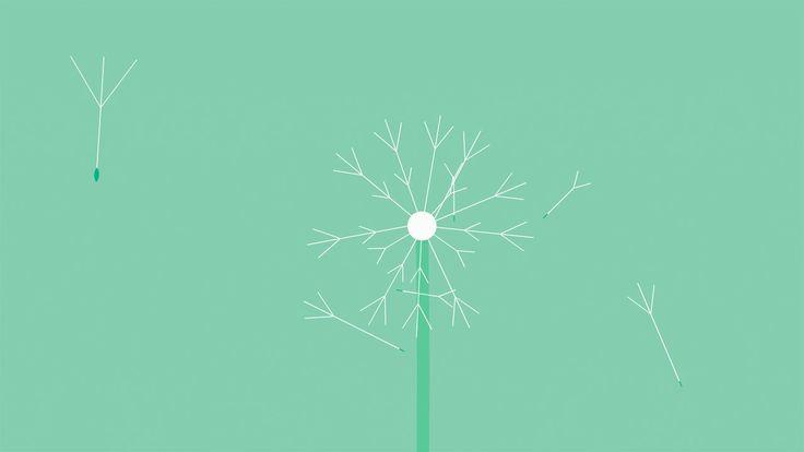 Apple – Health App – Mindfulness