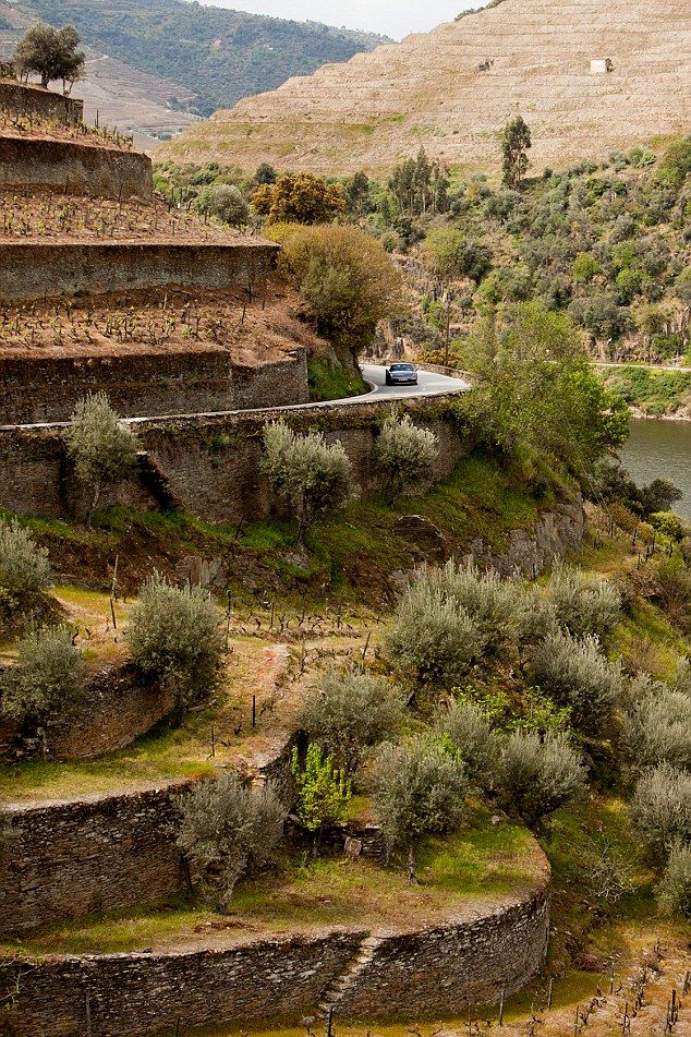 The world's best road voted to be in Portugal's wine region - via Daily Mail 24.04.2015 | The N-222 road from Peso de Regua to Pinhao in Portugal has been awarded Best Road in the World. 17 miles, 93 bends and breathtaking views of the Douro Valley: The world's best road is in Portugal's wine region.