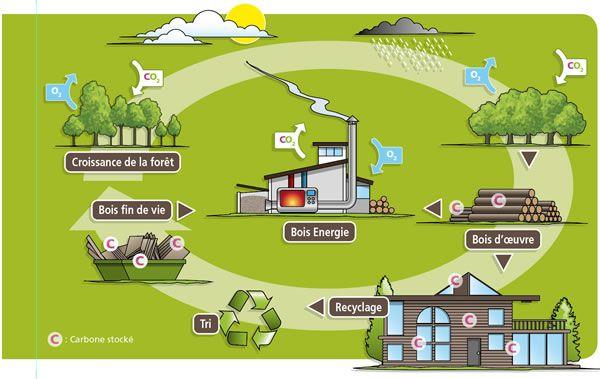 Aveyron energie bois, association pour développement durable de la filière bois
