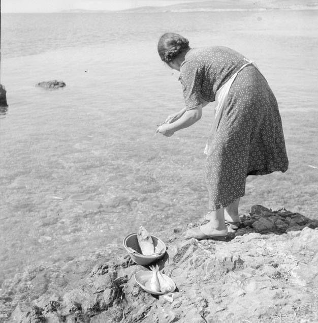 Καθορίζοντας τα ψάρια... [Πάρος, 1958. Φωτ. Ζαχαρίας Στέλλας Φωτογραφικά Αρχεία Μουσείου Μπενάκη] Fish cleaning process... [Paros island, 1958. Photo by Zacharias Stellas Benaki Museum Photographic Archives]