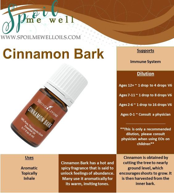 How to use Cinnamon Essential Oil History of Cinnamon Bark Essential Oil Cinnamon bark oil (Cinnamomum verum) comesfrom the plant of the species nameLaurus cinnamomumand is part ofthe Lauraceae…