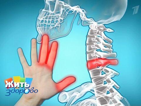 Шейный остеохондроз  >Тест: Есть ли у вас шейный остеохондроз? Сделать плавные движения головой влево, вправо, наклонить левым ухом к плечу, затем правым ухом к плечу. Появились ли звуки, хруст, боль, дискомфорт или ограничение движения?  >Онемение пальцев рук – признак шейного остеохондроза Если онемение происходит в мизинце и безымянном пальцах, это говорит о проблемах в нижнем шейном отделе позвоночника – проблема 8-го шейного позвонка влияет на 7-й и 8-й шейные корешки.  При онемении…