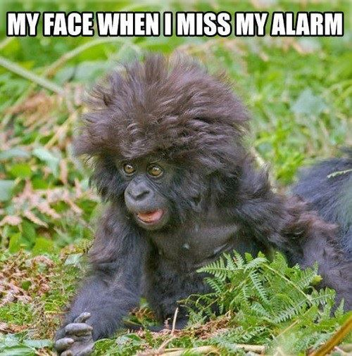 When I miss my alarm in the morning.