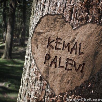 Love Kemal Palevi