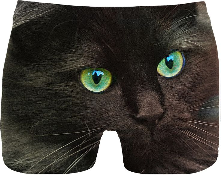 Check out my new product https://www.rageon.com/products/cat-green-eyes-men-underwear?aff=BWeX on RageOn!