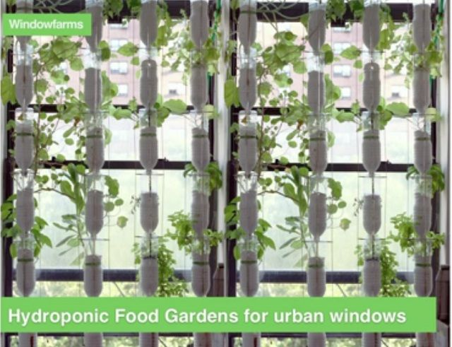 10 images about hydroponic retail on pinterest gardens for Indoor gardening retailers