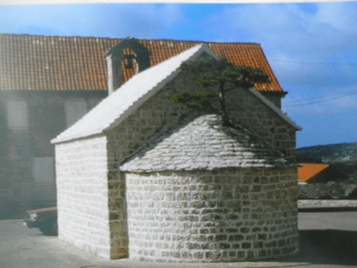 Tree that grows from the roof of the church