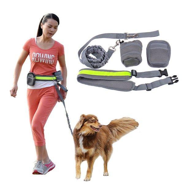 Full Multifunctional Dog Walking Kit with Belt | knittedPaws | Price: $17 + FREE Shipping     #dog #puppy #collar #harness #leash #dogwalk #belt