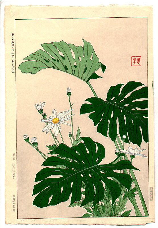 House Plants - by Shodo Kawarazaki 1889-1973