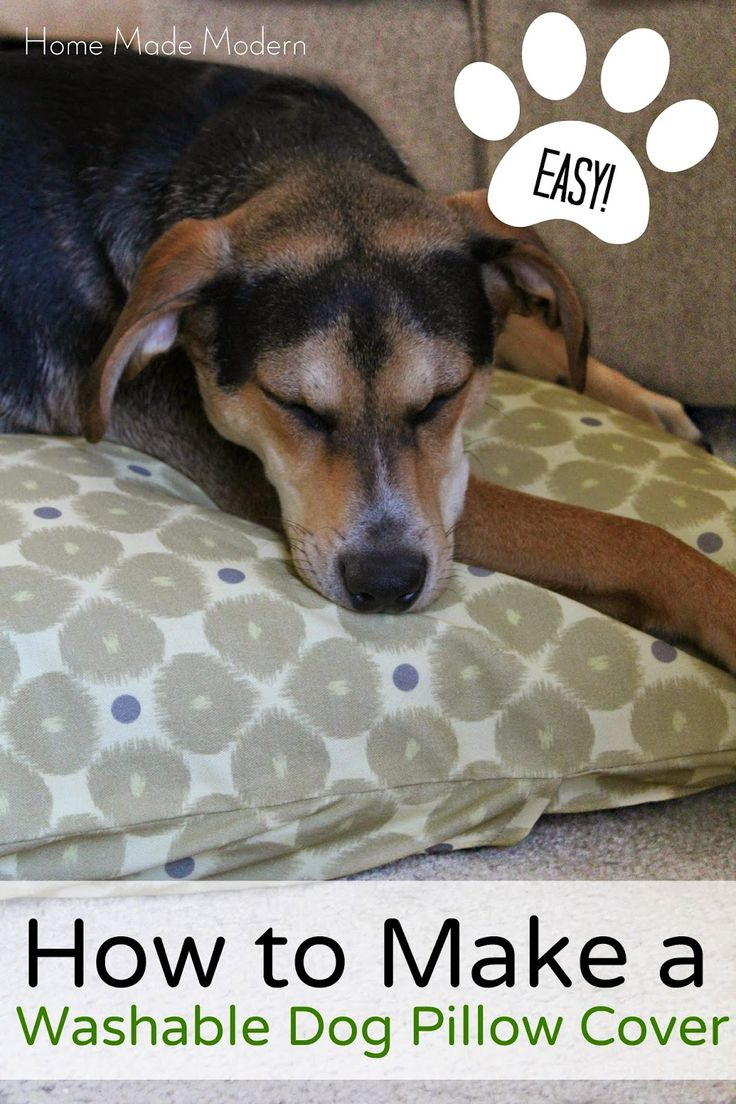18612 Best Images About Dog Beds On Pinterest Pet Beds, Dog Beds And Raised  Dog