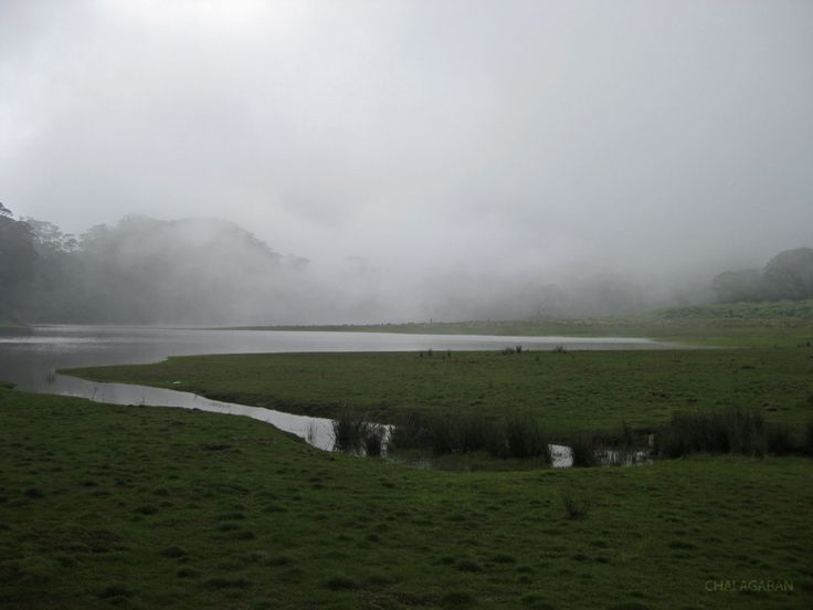 The Mystic Lake Venado, the highest lake in the country. Can be found at the highest mountain in the Philippines, Mount Apo. This lake is considered to be sacred