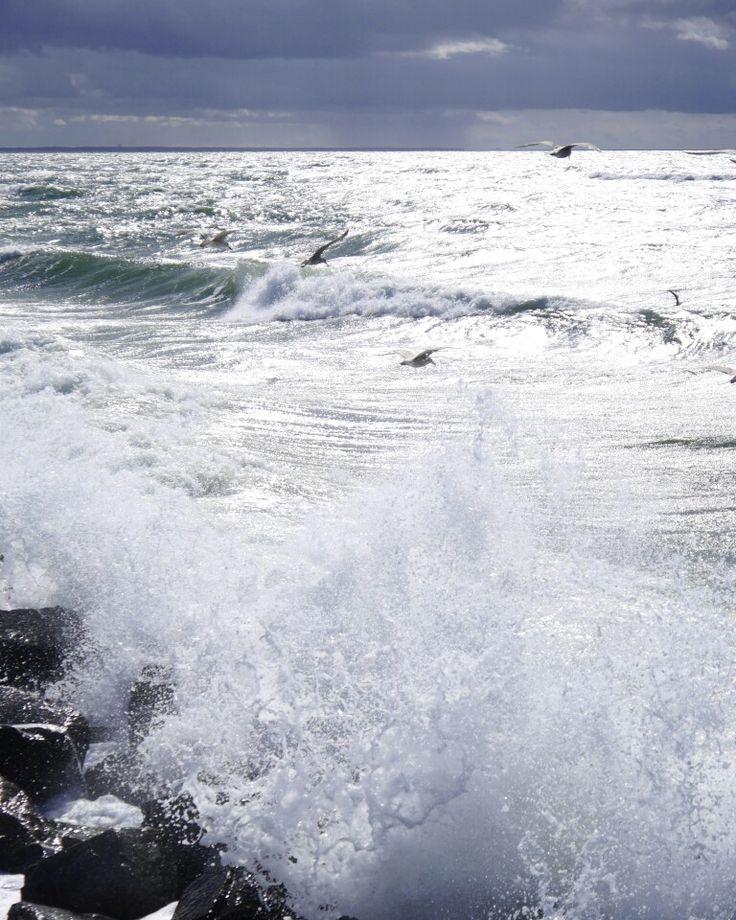 .: And then the sun came out for a breathtaking and dramatical vibe  / Und dann kam die Sonne raus und kreiert eine atemberaubende und dramatische Stimmung  :. #balticsea #seebrückewustrow #seebrücke #möven #brandung #seagull #ostsee #wustrow #dramaticsky #landschaftsfotografie #fotografie #nature #natureneedsnofilter #thebeautyofnature #natur #nautical #maritim #naturfotografie #naturephotography #wildlifephotography #panasonicG6