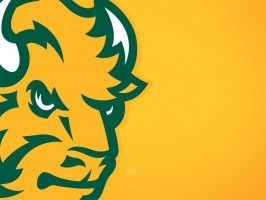 Bison Football Coming to TRF Radio The North Dakota State University Bison are coming to Thief River Falls Radio. On Wednesday, Thief River Falls Radio and NDSU entered into a contract to carry North Dakota State University Bison Football on Real Country 1460. The NDSU Football program has seen incredible national media attention... http://www.thiefriverfallsonline.com/thief-river-falls-news/bison-football-coming-to-trf-radio/