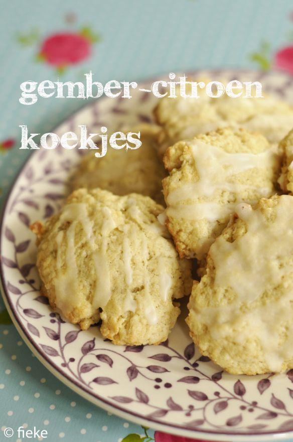 Een verwarmend koekje deze keer! Speciaal gebakken voor Femke, een vriendin die komt oppassen voor Kasper als we er even tussenuit zijn. Een dankjewel-koekje dus! NODIG: voor ongeveer 12 koekjes 25…