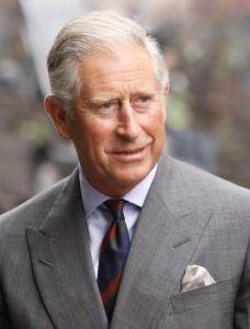 チャールズ皇太子。イギリス王子の画像