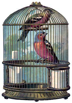 free vintage printable bird cage with birds