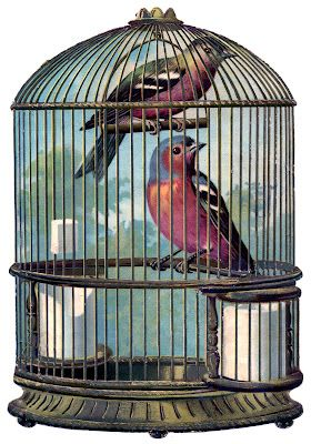 free vintage printable bird cage with birds