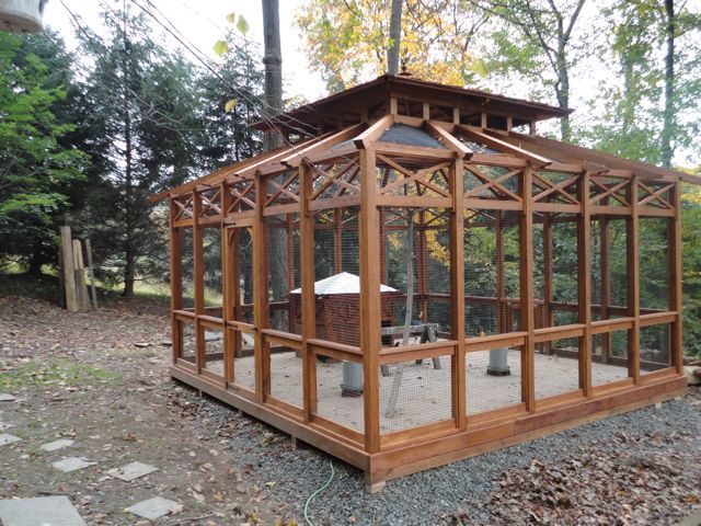 Construction Tents Enclosures : Custom wood gazebo pavilion aviary aviaries birdies