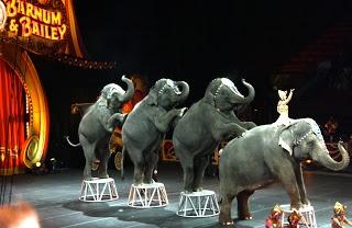 Ringling Brothers Circus at Intrust Bank Arena (Ticket #GIVEAWAY) in Wichita, Ks #Wichita #Kansas #KS