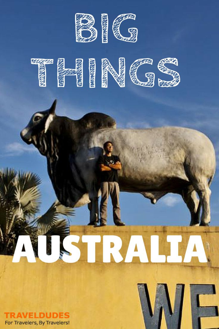Watch Out For Australia's Big Things