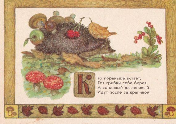 Postcard Illustration by Dudnikov Hedgehog  by RussianSoulVintage