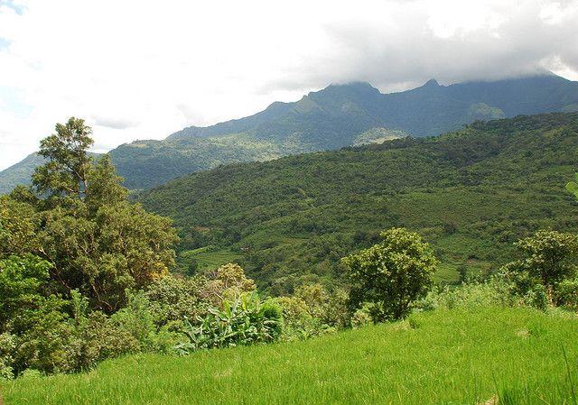 Knuckles Mountain Range, Central Province, Sri Lanka #SriLanka #Mountains #Knuckles