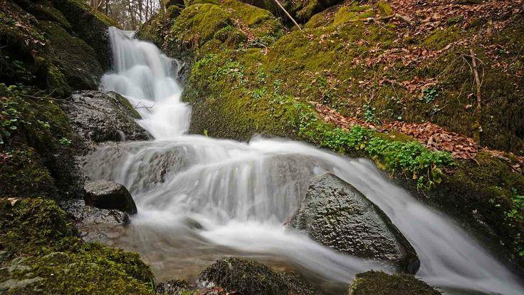 Bach im Muehlviertel beim trailrunning #trailrunning #Natur #nature