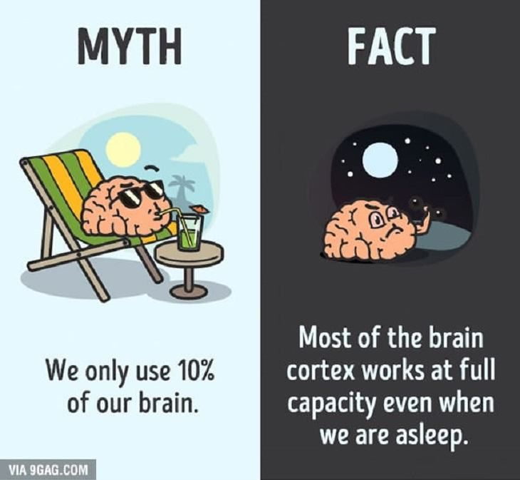 Here's a fun fact about how your brain works.
