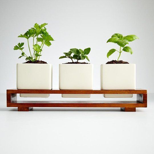 Indoor Edible Gardens: Herb Planters | Apartment Therapy