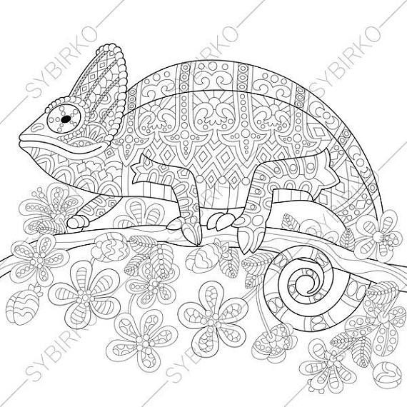 Adult Coloring Pages Chameleon Lizard Zentangle Doodle