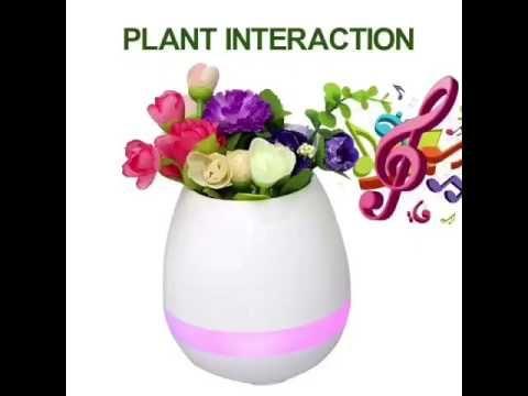 Netural or OEM  brand waterproof Bluetooth music flowerpot with music, n...