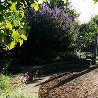 King John's Garden - Photos | Facebook