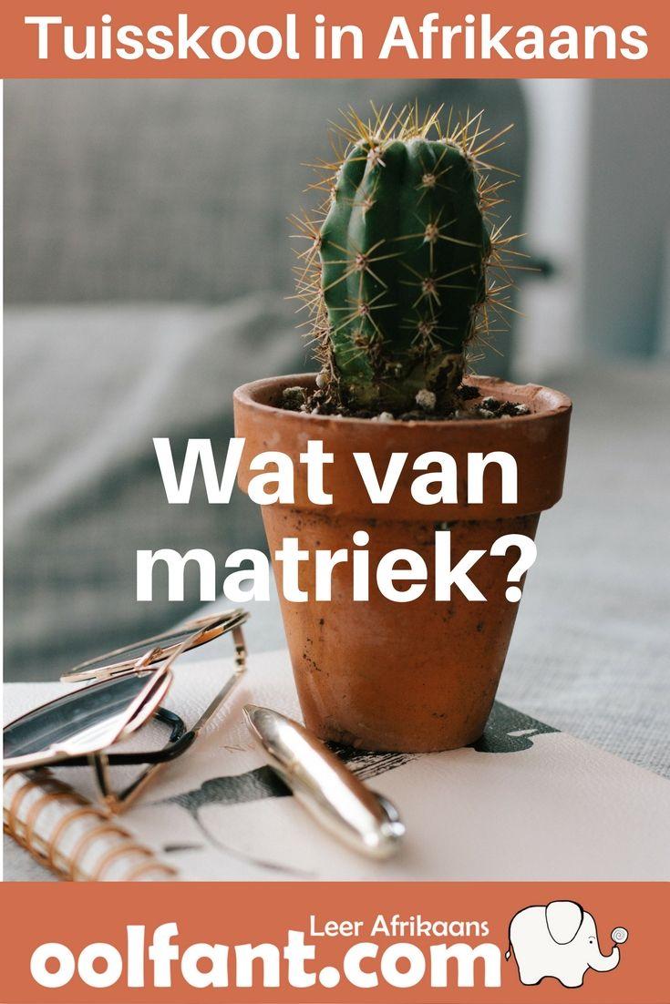 Matriek: die 5 moontlikhede vir SA tuisskolers - Oolfant.com: Leer Afrikaans