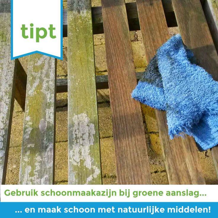 Last van groene aanslag? Dat ga jij natuurlijk te lijf met schoonmaakazijn! Wil je meer handige DIY tips om natuurlijke schoonmaakmiddelen te maken? Meld je dan aan voor onze schoonmaakworkshop. #NudgeTipt