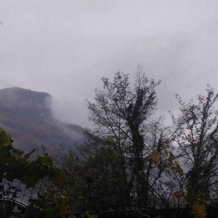 #6novembre #2017 #day6 #rainyday.   #giornodopogiorno #daybyday #montegragno #natura #naturelover #naturesbeauty #naturallife #phoneography #nofilter #toscana #tuscany #italia#italy