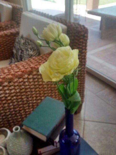 Flores en los rincones de mi hogar