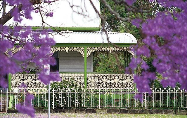 jacaranda trees and historic homestead Grafton NSW Australia