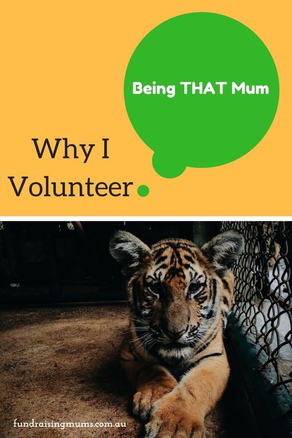 Being THAT Mum - Why I Volunteer