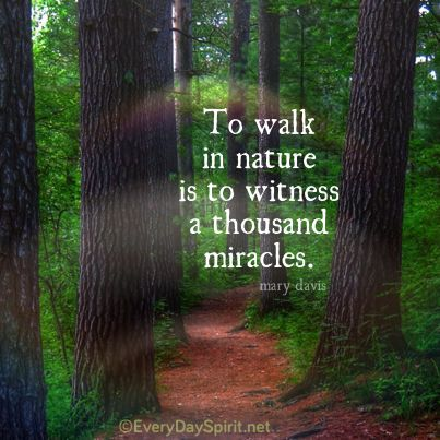 Image result for walking in nature images