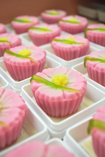 Japanese sweets -wagashi-