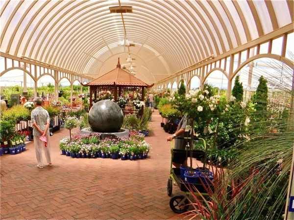 #Virginia Nursery, South Australia #garden centre #Plants