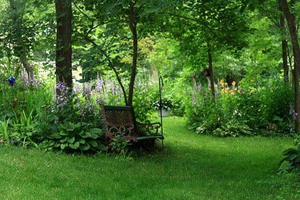 A shady seat, inspiration for my silver birch grove, surrounded by white foxgloves, white erythronium, white dicentra, white thalictrum and white martagon lilies.