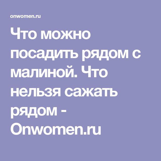 Что можно посадить рядом с малиной. Что нельзя сажать рядом - Onwomen.ru